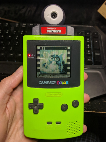 A Game Boy Color with Camera inserted, displaying a picture of an original Furby.