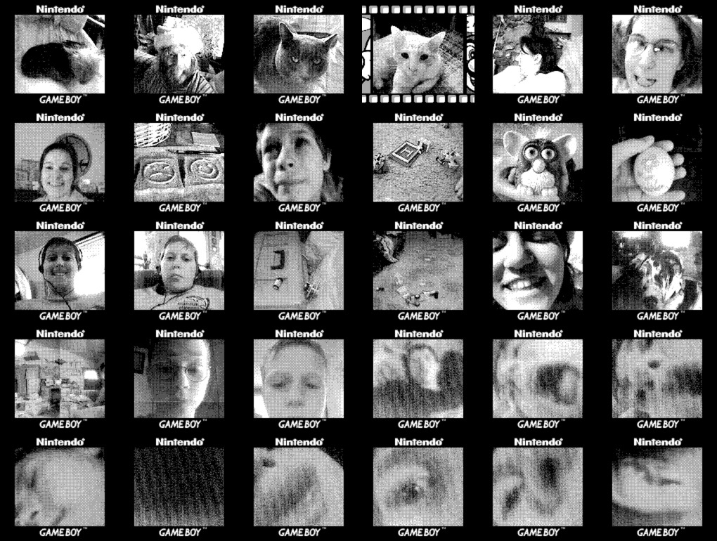 A collage of small, grainy, grayscale images from the Game Boy Camera depicting people, pets, and toys from that time in my life.